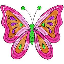 Butterfly 5x7
