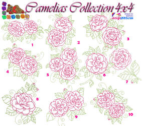 Camelias Collection 4x4