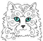 Cat 8 4x4