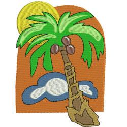 Coconut Palm 4x4