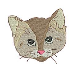 Kitty Faces 4 4x4