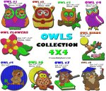 OWLS  Collection 4x4